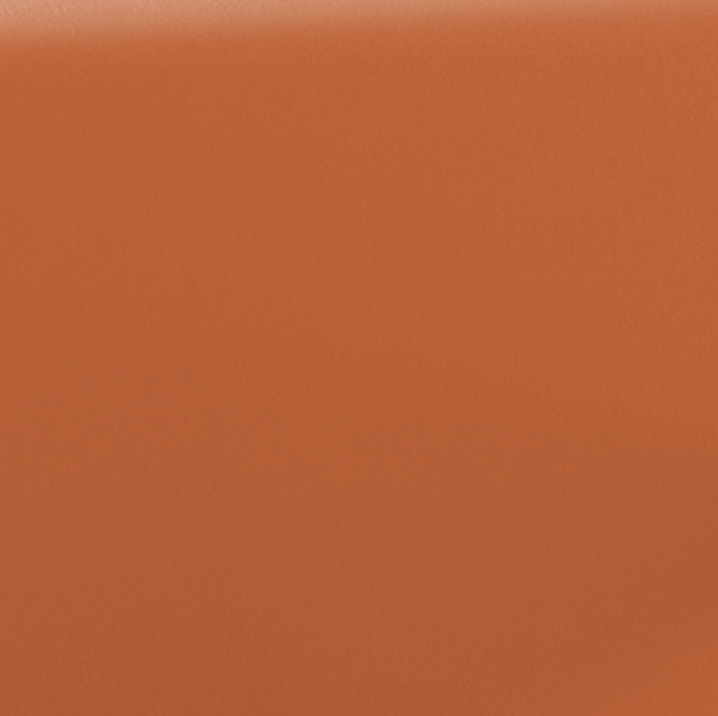 Cognac läder - lær - leather